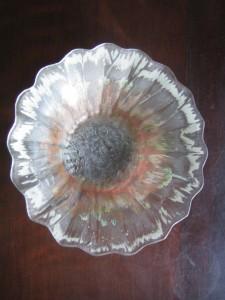 1991 Glasshouse Scallop