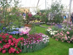 Garden show Uk June 07 040